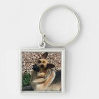 Quizzical German Shepherd Keychain