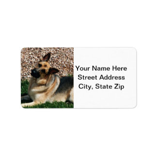 Quizzical German Shepherd Label