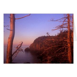 Quoddy Head Maine Ocean Bluffs at Sunrise Card