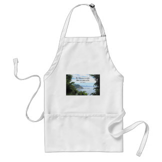 Quote about our views of the universe. adult apron
