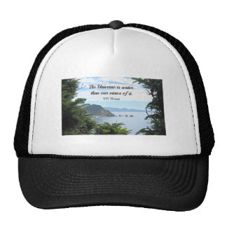 Quote about our views of the universe. mesh hats