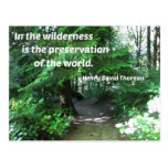 Quote about the wilderness by Thoreau Post Cards