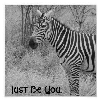 Quote and Zebra Poster