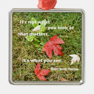 Quote byThoreau: It's not what you look at that Metal Ornament