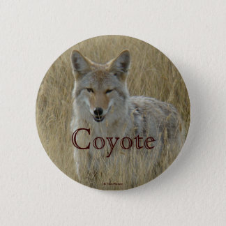 R0002 Coyote in Tall Grass button