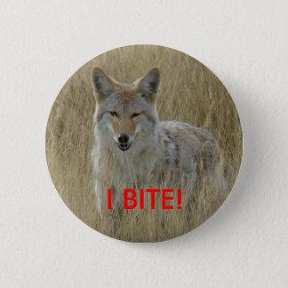 R0002 Coyote Pinback Button