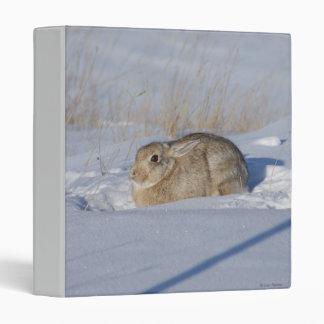R0005 Cottontail Rabbit in Snow binder