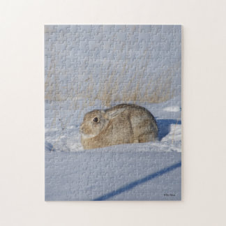 R0005 Cottontail Rabbit Jigsaw Puzzle