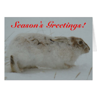 R0007 Snowshoe Hare Greeting Card