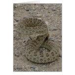 R0009 Prairie Rattlesnake Greeting Cards