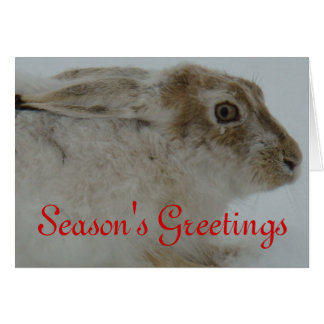 R0011 Snowshoe Hare Greeting Card