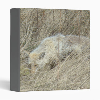 R0013 Coyote in Tall Grass binder