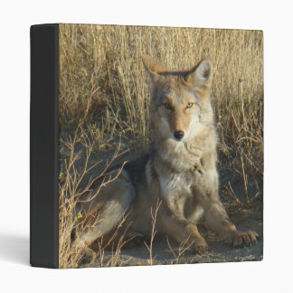 R0015 Coyote Laying binder