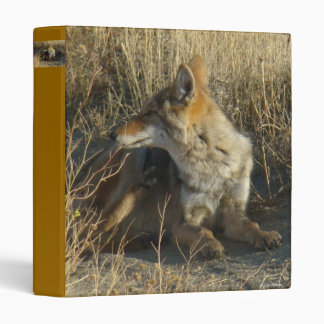 R0016 Coyote Scratching binder