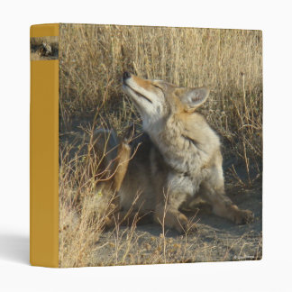 R0017 Coyote Scratching binder