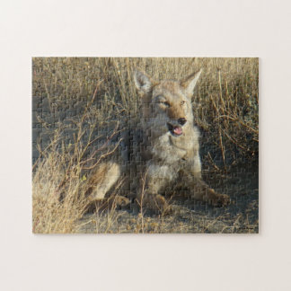 R0018 Coyote Jigsaw Puzzle