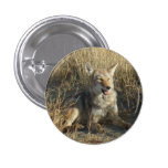 R0018 Coyote Laying Pinback Buttons