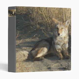 R0019 Coyote Laying Binder
