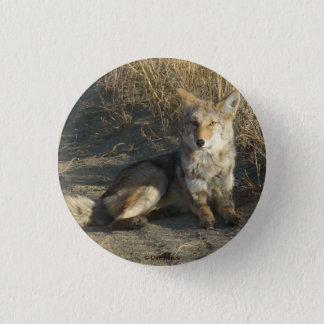R0019 Coyote Pinback Button