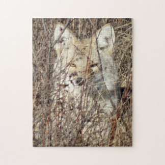 """R0021 Coyote """"Watching You"""" Jigsaw Puzzles"""