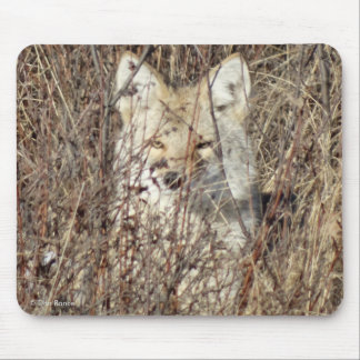 """R0021 Coyote """"Watching You"""" Mouse Pad"""