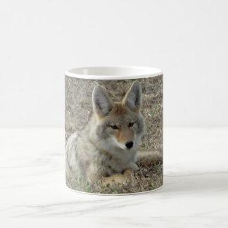 R0022 Coyote Laying Coffee Mug