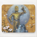 R2-D2 and C-3PO Pose Mouse Pads