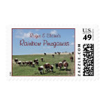 R&E's Pinzgauer Cattle Stamp- customize Postage