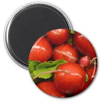 Rábano rojo imán redondo 5 cm