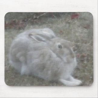 Rabbit 2009 mouse pad