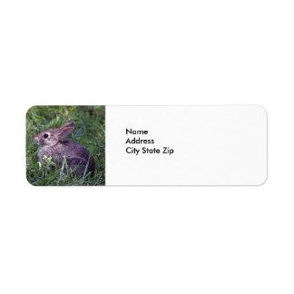 Rabbit 8603 label