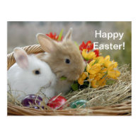 Rabbit 9 Easter Postcard