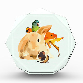 rabbit acrylic award