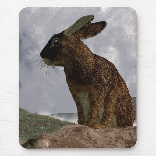 Rabbit After a Spring Storm Mouse Pad