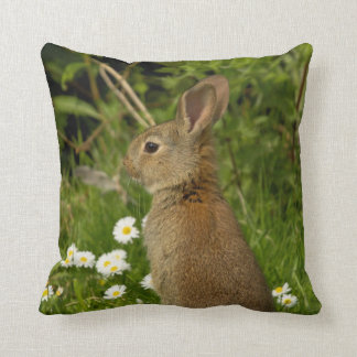 Rabbit American Mojo Pillow/Cushion Throw Pillow