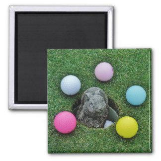 Rabbit and colored Golf Balls Refrigerator Magnet