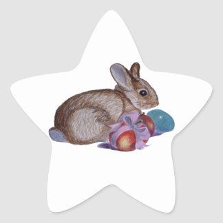 Rabbit And Easter Eggs Painting Star Sticker