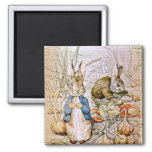 Rabbit and Friends Magnets