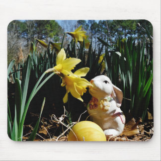 Rabbit and Yellow  Easter egg Mouse Pad