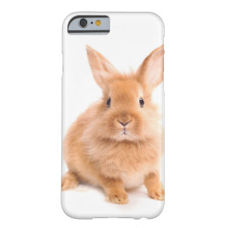 Rabbit Barely There iPhone 6 Case