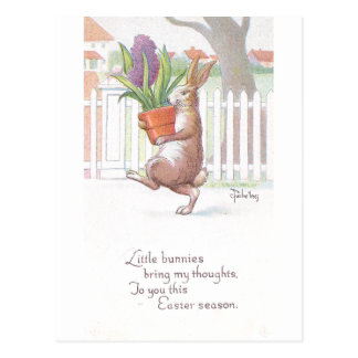 Rabbit Carrying Potted Purple Hyacinth Postcard