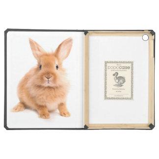 Rabbit iPad Air Case