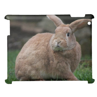 Rabbit Case For The iPad