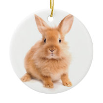 Rabbit Ceramic Ornament