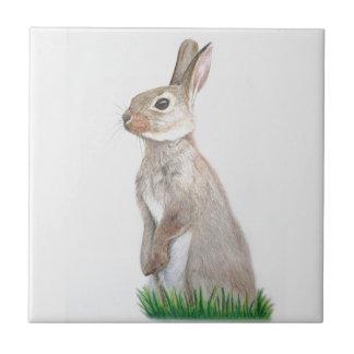 Rabbit Ceramic Tile