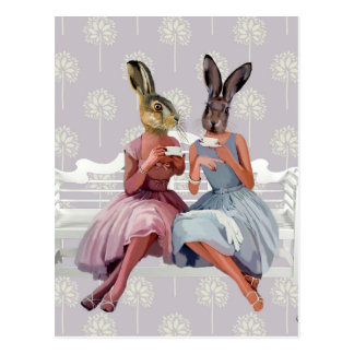 Rabbit Chat Postcard