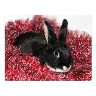Rabbit Christmas Postcard