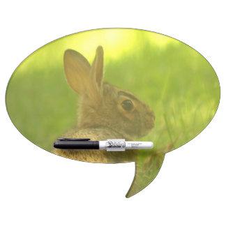 Rabbit Dry-Erase Board