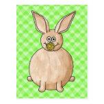 Rabbit eating a flower. post card
