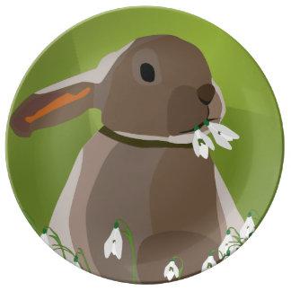 Rabbit eating snowdrops dinner plate
